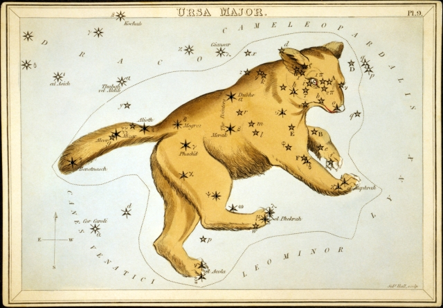 Ursa_Major2 (1)